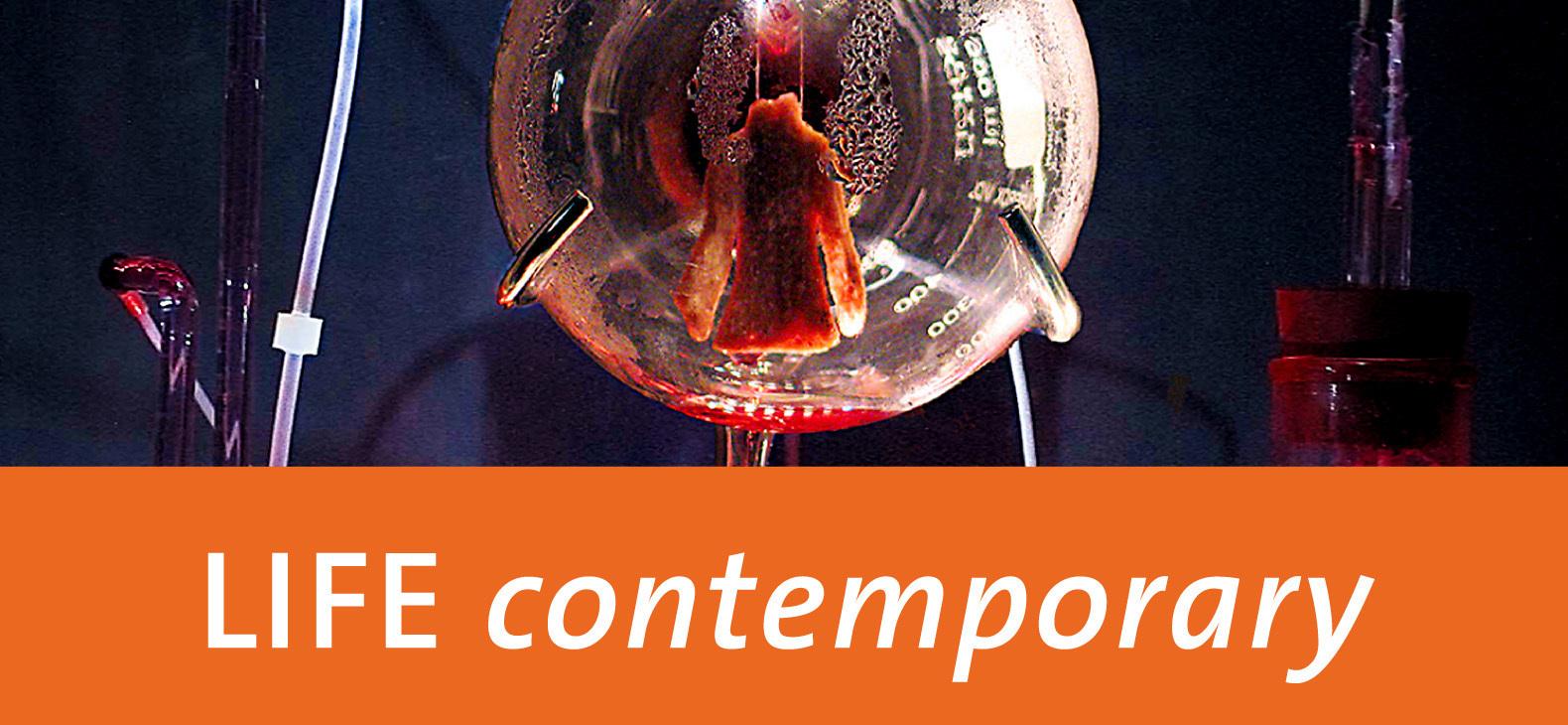 LIFE contemporary